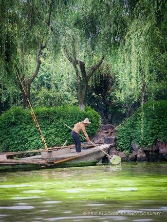 Harvesting Algae in Suzhou