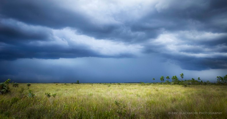 Storm brewing over the eastern Everglades.