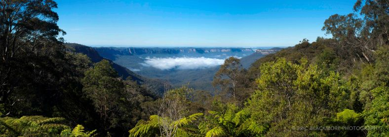 Morning Clouds in The Blue Mountains